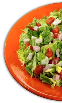 Saladworks a franchise opportunity from Franchise Genius
