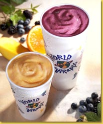 World Wrapps a franchise opportunity from Franchise Genius