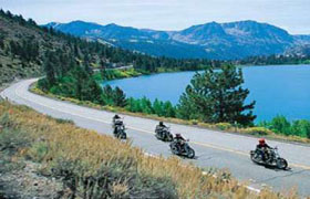 Bikers Bay a franchise opportunity from Franchise Genius