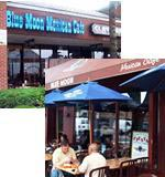 Blue Moon Mexican Cafe a franchise opportunity from Franchise Genius