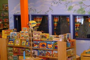 Brilliant Sky Toys & Books a franchise opportunity from Franchise Genius