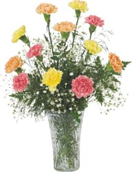 Grower Direct Fresh Cut Flowers a franchise opportunity from Franchise Genius